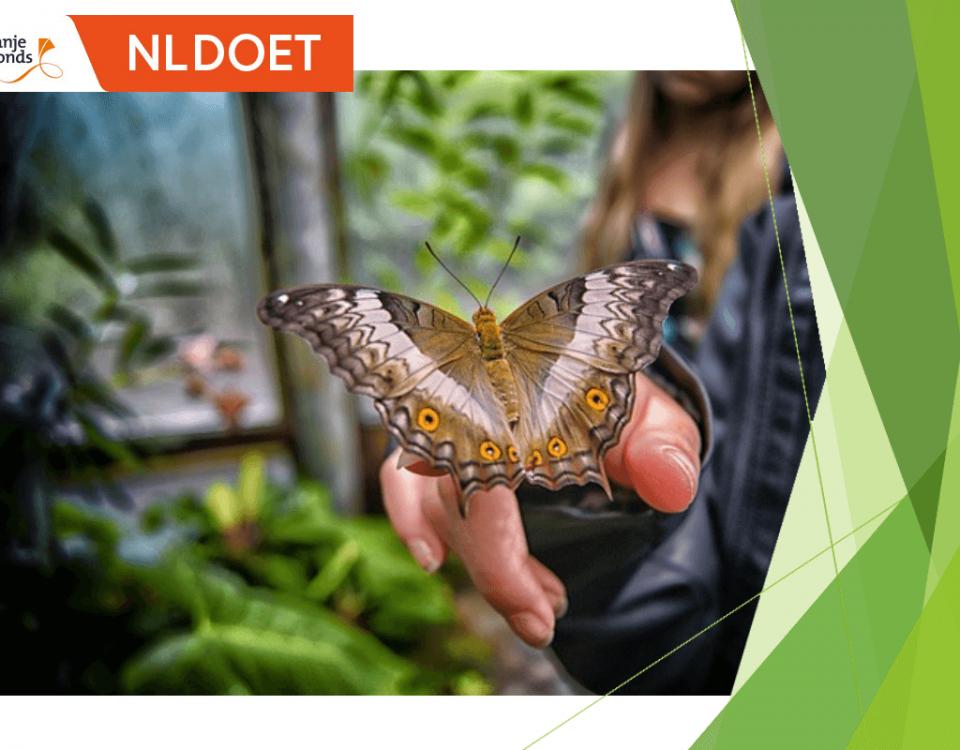 NL Doet 2019 ConMar doet weer mee en geeft het Agathepark in Krommenie een steuntje in de rug.